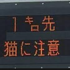 面白画像・笑ったら寝ろ 1081