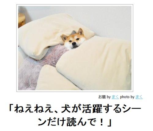 面白画像・笑ったら寝ろ 1193